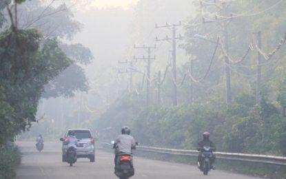 Angin Bergerak ke Selatan, Kabut Asap dari Riau Tak Masuk ke Kepri