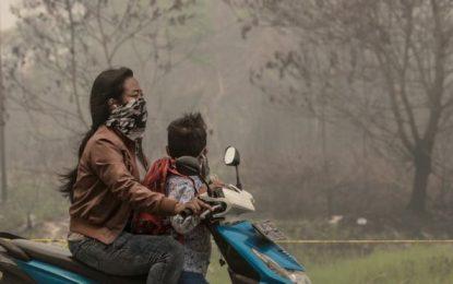 Dari Denda Belasan Triliun, Pemerintah Klaim Baru Terima Rp 400 Miliar dari Perusahaan Pembakar Lahan