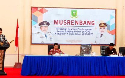 Wan Siswandi Buka Musrenbang RPJPD Natuna 2005-2025