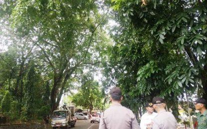 Dinas PUPR Tanjungpinang Potong Pohon yang Membahayakan