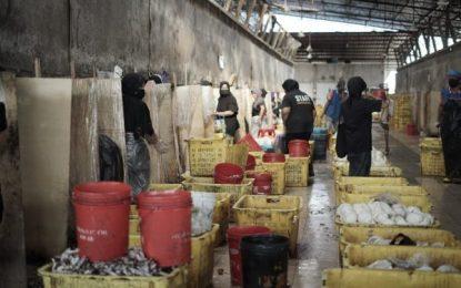 Ditengah Pandemi Covid-19, Bea Cukai Kepri Tetap Fasilitasi Ekspor
