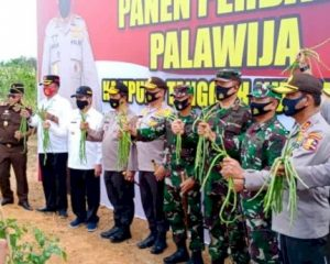 Bupati Rohil Sambut Kunjungan Kabaharkam Polri