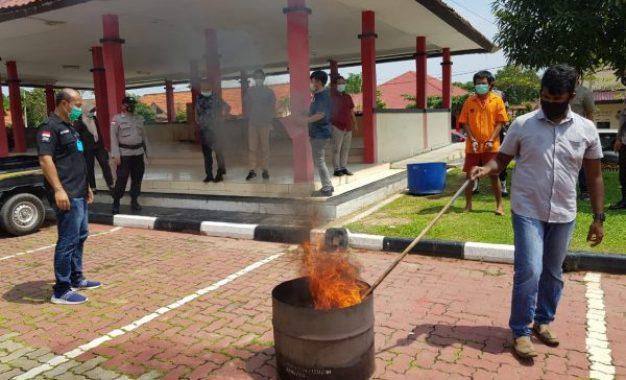 Narkotika Jenis Ganja Hasil Tangkapan di Kampung Bule Dimusnahkan