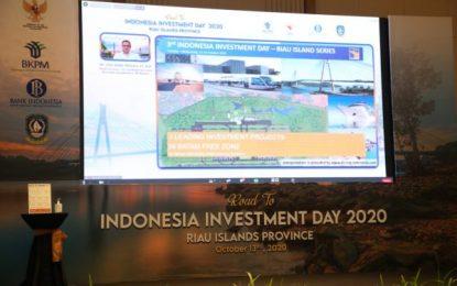 Rencana Pengembangan KEK Hang Nadim Batam Pikat Hati Investor Asing