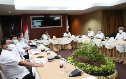 Rudi Paparkan Capaian BP Batam dalam RDP bersama Komisi VI DPR